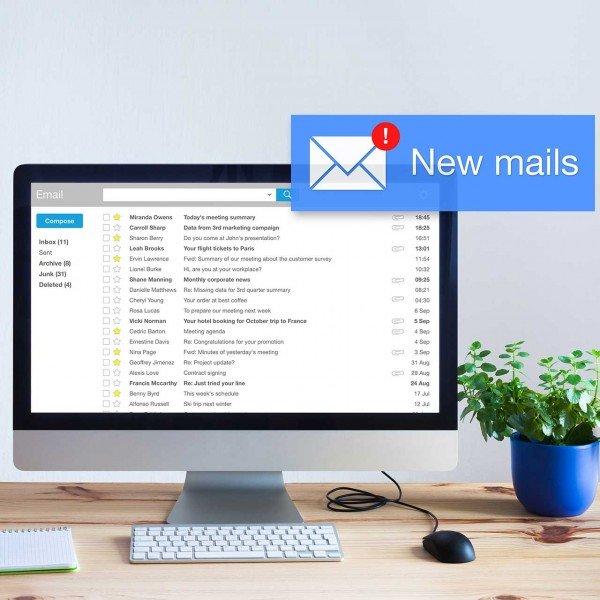 12 mesi Email Pro certificate per...